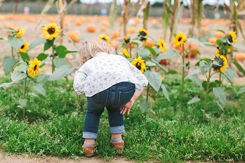 little girl smelling flowers by Meaghan Curry for Stocksy United