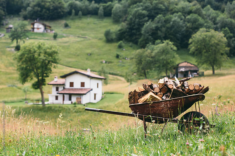 Wheelbarrow with firewood by michela ravasio for Stocksy United