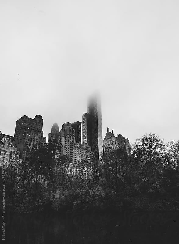 Foggy city over trees by Isaiah & Taylor Photography for Stocksy United
