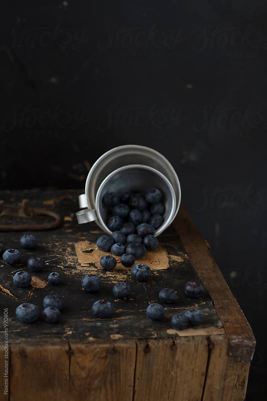 Blueberry by Noemi Hauser for Stocksy United