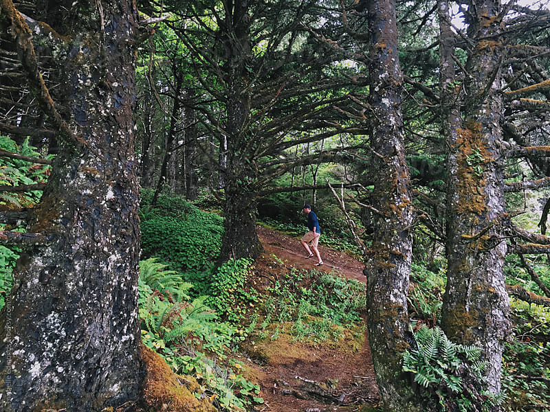 Man Hiking through the Woods on the Pacific Coast of Washington by michelle edmonds for Stocksy United
