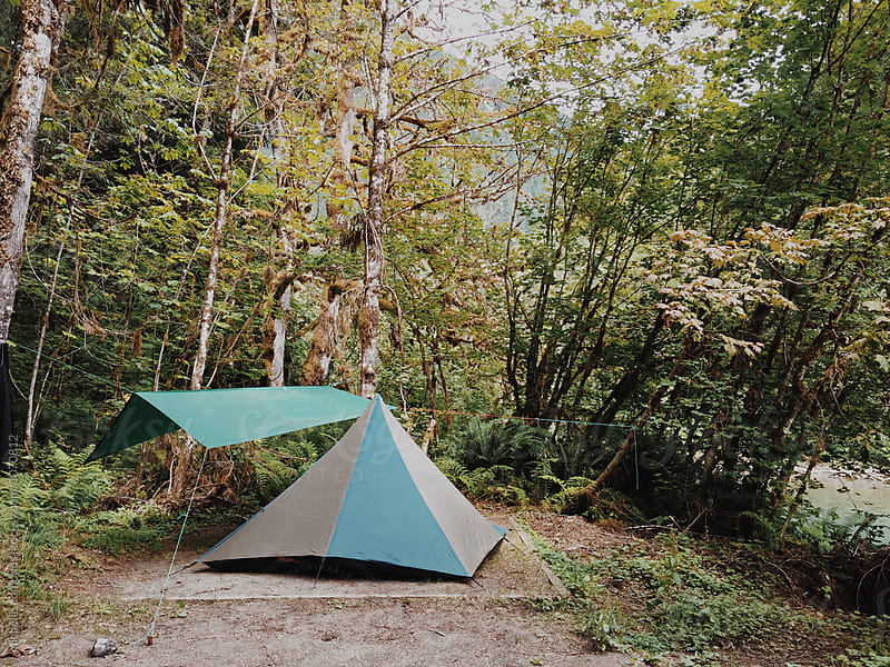 Tent Camping in a Campground Surrounded by Trees in Washington by michelle edmonds for Stocksy United
