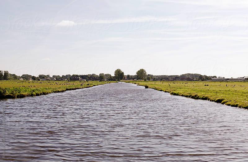 dutch landscape by Rene de Haan for Stocksy United