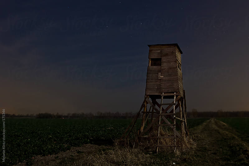 High seat at night, lit by moonlight, light by Melanie Kintz for Stocksy United