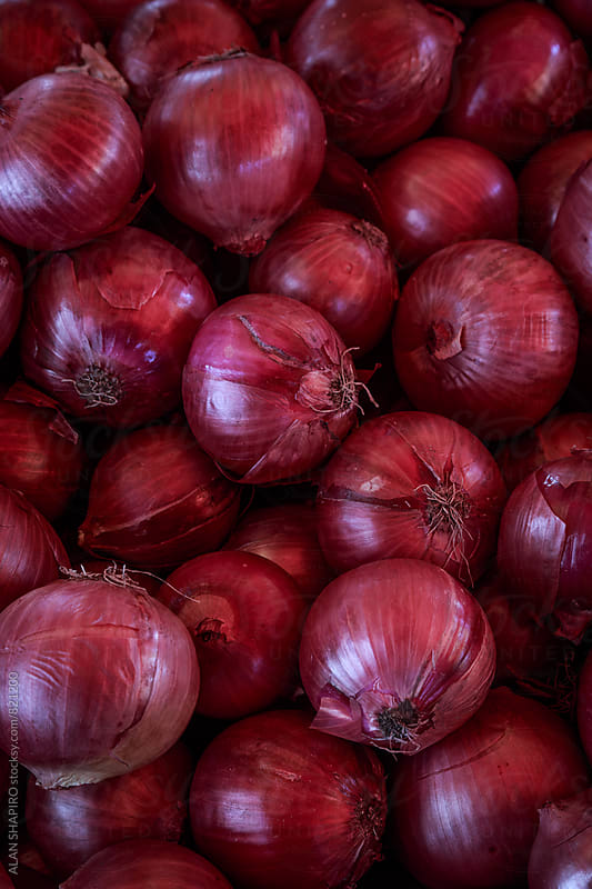 red onions by alan shapiro for Stocksy United