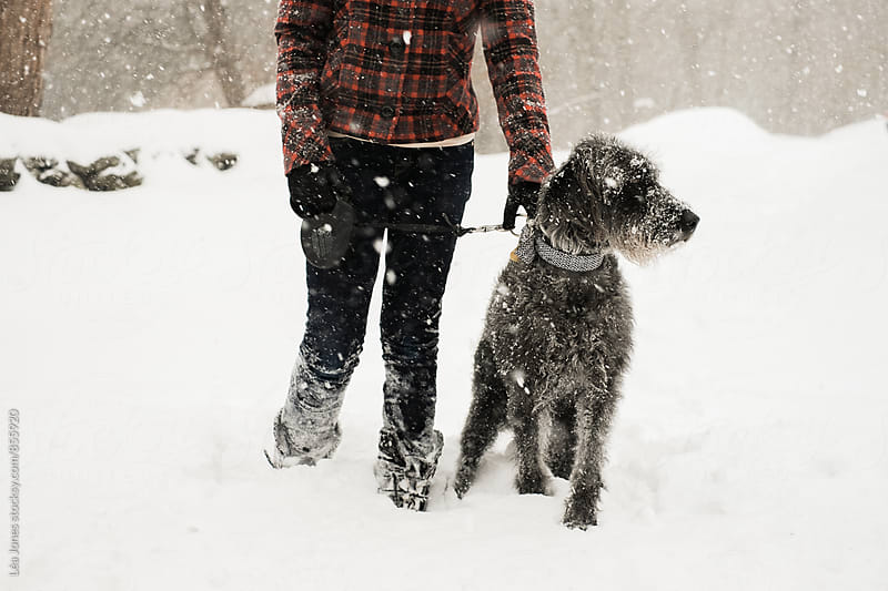 young woman holding her dog in the snow by Léa Jones for Stocksy United