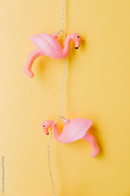 Flamingo light garland by Vera Lair for Stocksy United