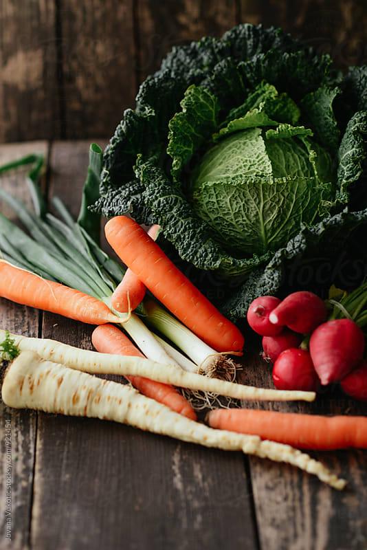 vegetable by Jovana Vukotic for Stocksy United