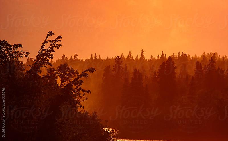 Misty River by David Jackson for Stocksy United