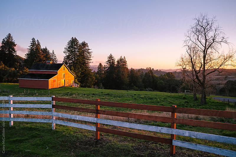 Old Barn Sunset Glow by Casey McCallister for Stocksy United
