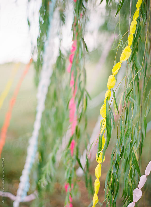 Bubble streamers in a willow by Marta Locklear for Stocksy United