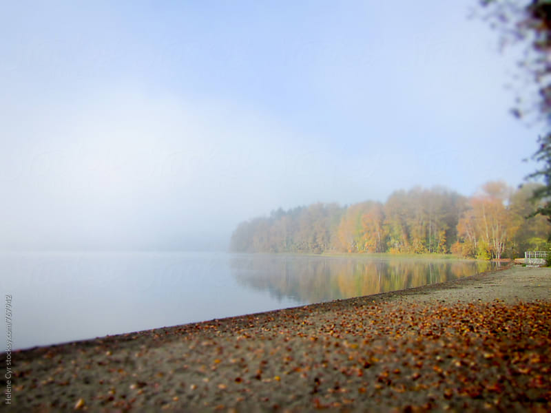 Autumn around Elk Lake by Helene Cyr for Stocksy United