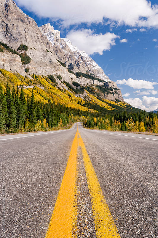 The Icefields Parkway, Rocky Mountains, Canada, North America by Gavin Hellier for Stocksy United