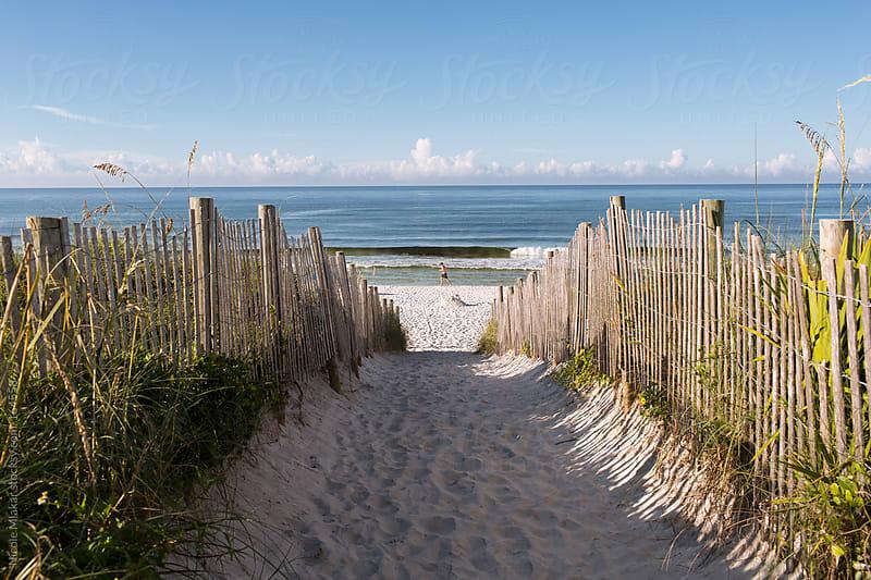 Ocean view along sandy path in Seaside, Florida by Nicole Mlakar for Stocksy United