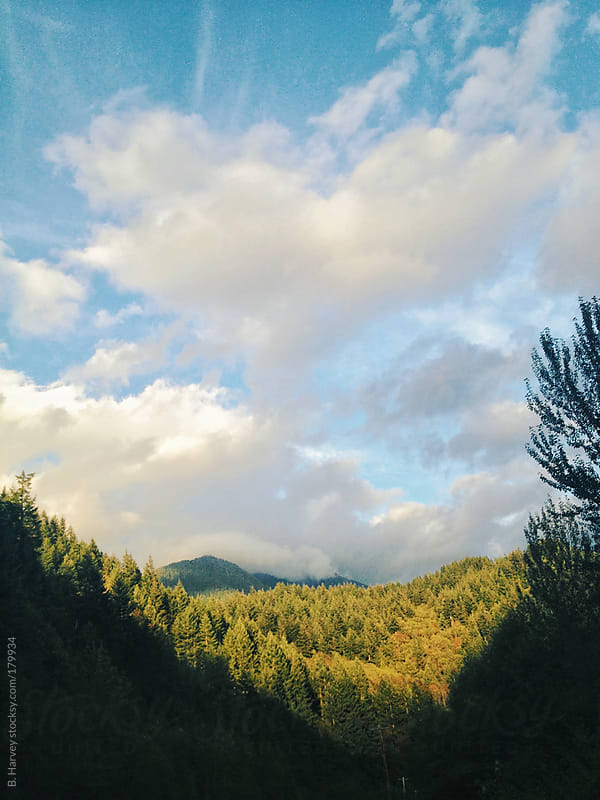 The pacific northwest on a sunny day by B. Harvey for Stocksy United