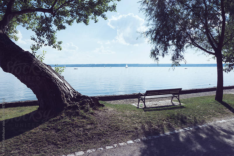 View of the lake Ammersee with bench and trees on a sunny day by Robert Kohlhuber for Stocksy United