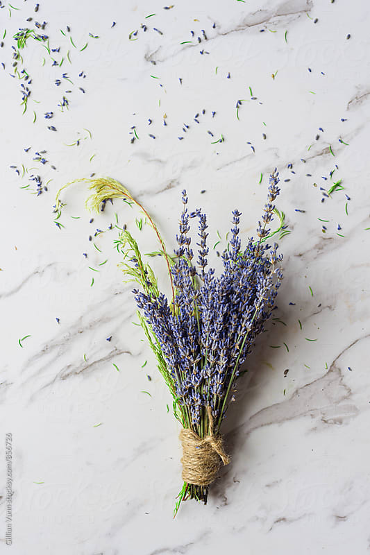 making a dried flower bunch with lavender, with lavender petals scattered by Gillian Vann for Stocksy United
