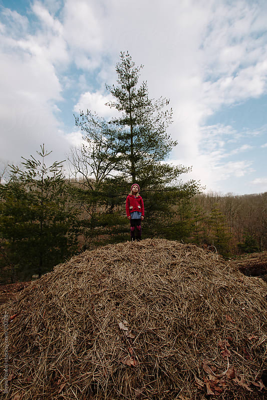 a little girl standing on a large haystack by Brian Powell for Stocksy United