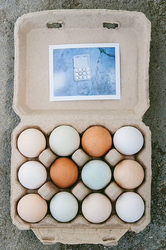 Carton of eggs with instant photograph by Deirdre Malfatto for Stocksy United