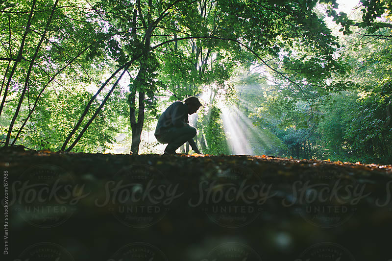 Person kneeling in the forest light by autumns morning light shining through the leaves  by Denni Van Huis for Stocksy United