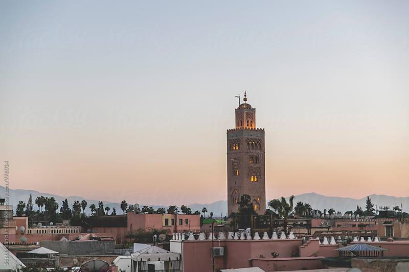 View over Marrakech during sunset by Sophia van den Hoek for Stocksy United