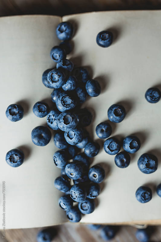 Blueberries by Tatjana Ristanic for Stocksy United