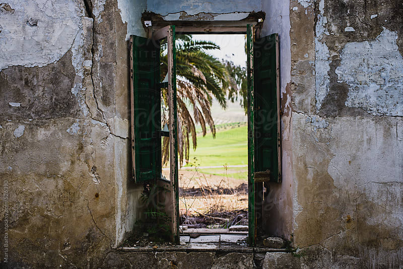 View of wild natural vegetation through a window in an abandoned country house by María Barba for Stocksy United