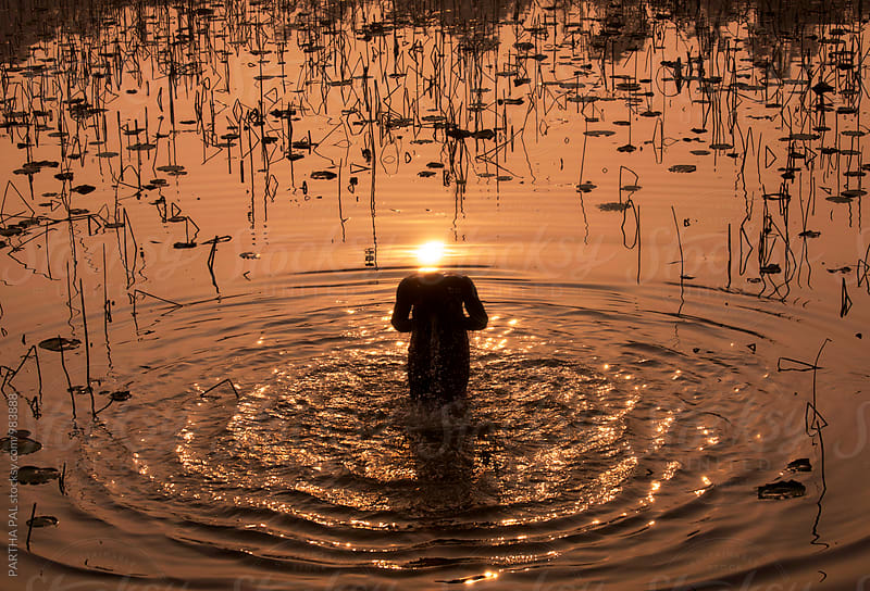 A man bathing in a pond early morning by PARTHA PAL for Stocksy United