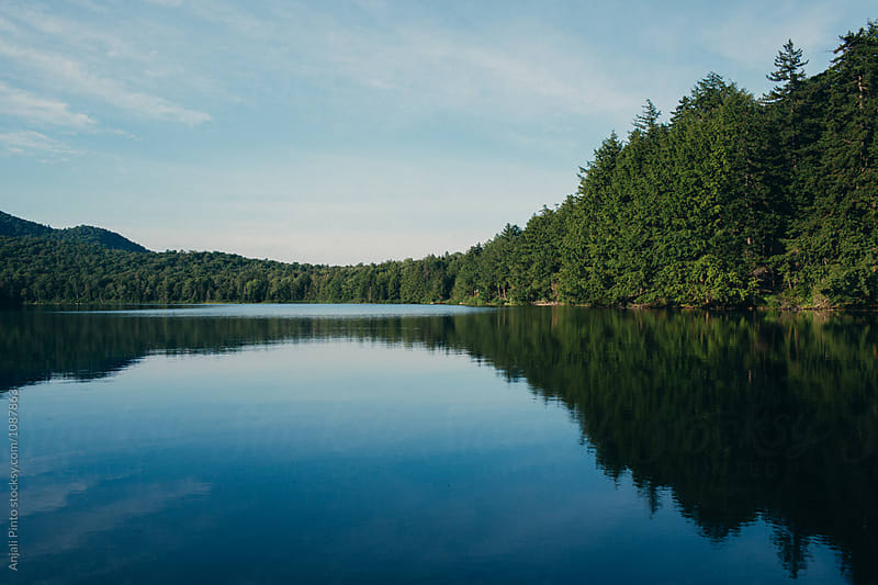 Blue Private Lake with Pine Trees by Anjali Pinto for Stocksy United