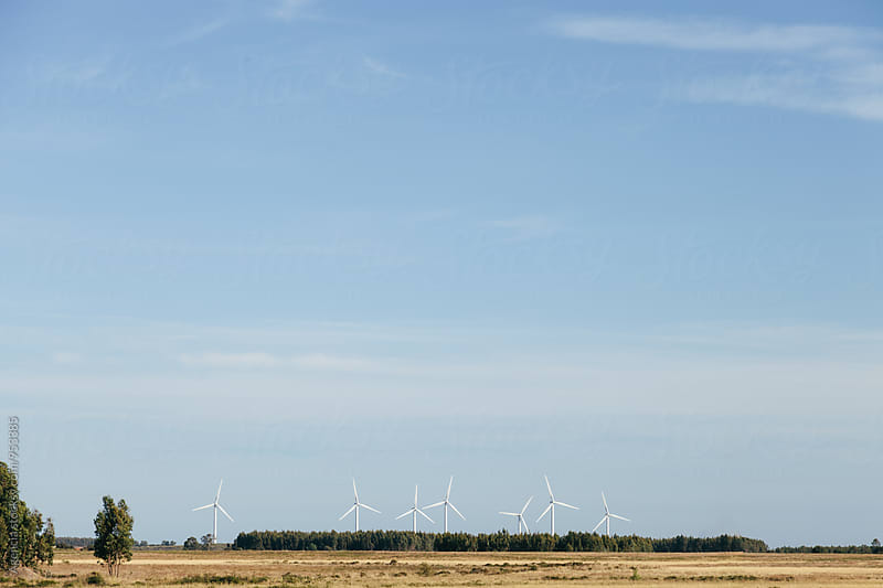 Wind Turbines by Agencia for Stocksy United