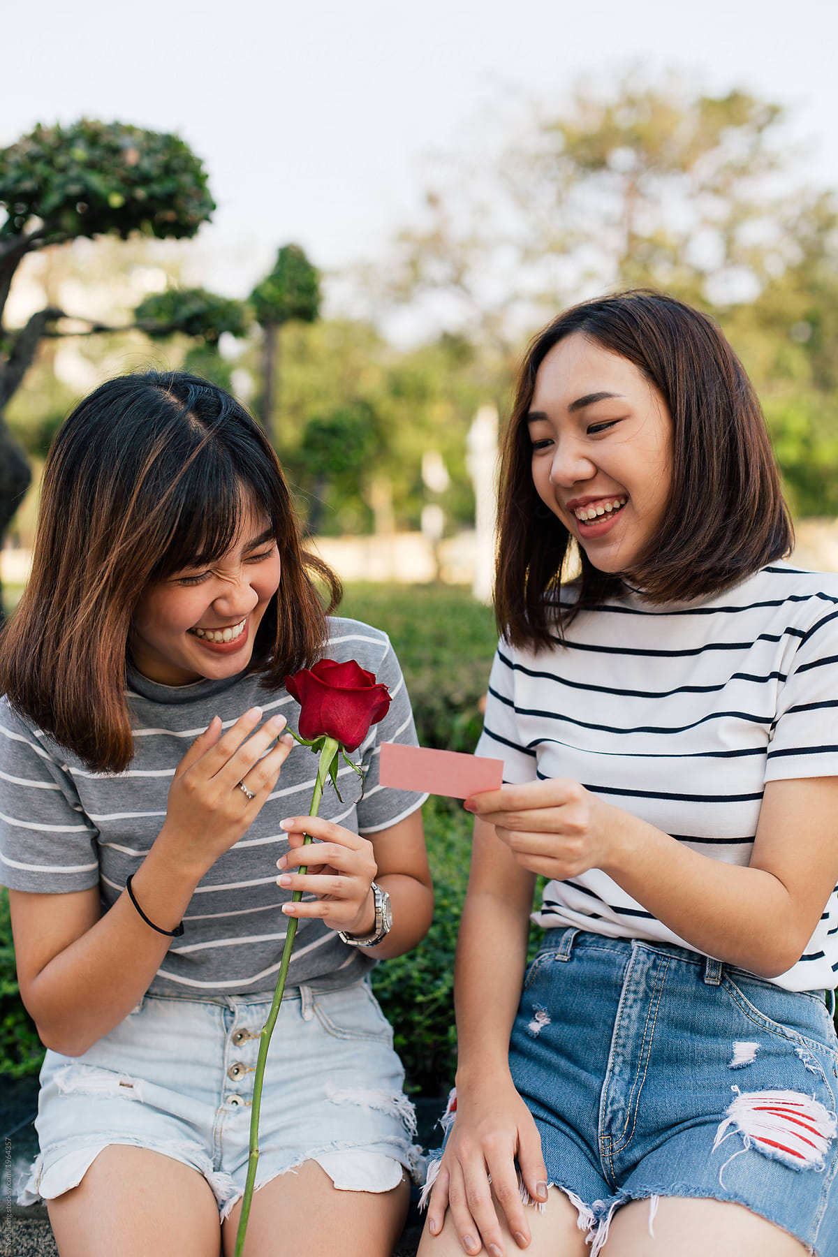 2 Asian girls with red rose in the park reading message on valentine's card  by Nabi