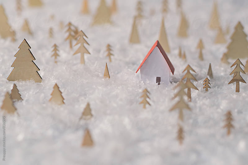 Winter wonderland by Preappy for Stocksy United