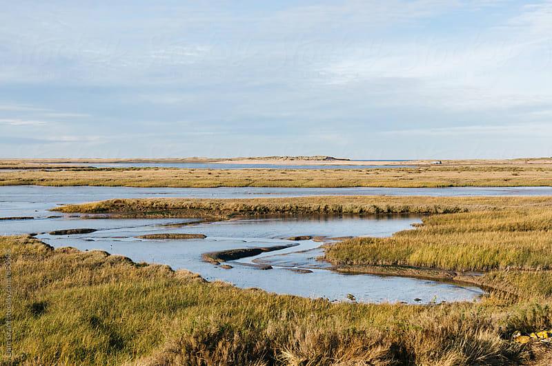 Low tide salt marsh at Burnham Overy Staithe, Norfolk, UK. by Liam Grant for Stocksy United