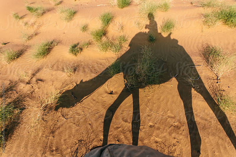 Shadow of a camel and man on a desert. Silhouette on sand by Alejandro Moreno de Carlos for Stocksy United