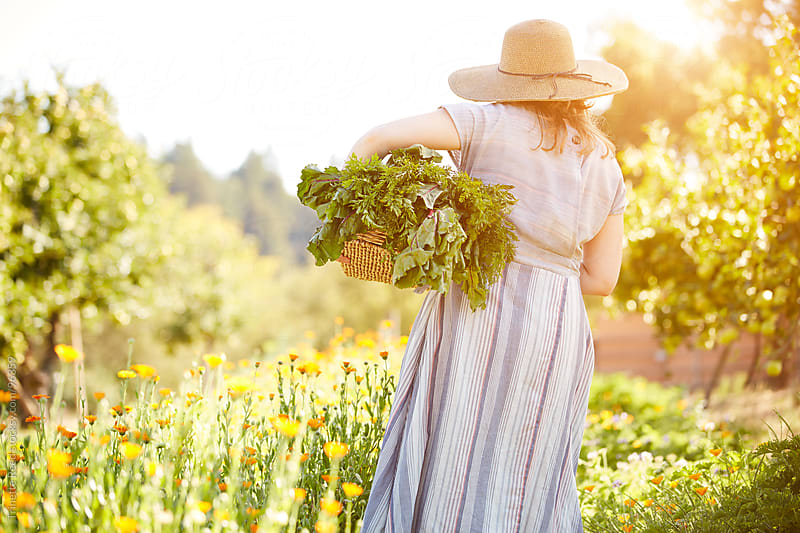 Woman farmer picking veggies at her organic farm by Trinette Reed for Stocksy United