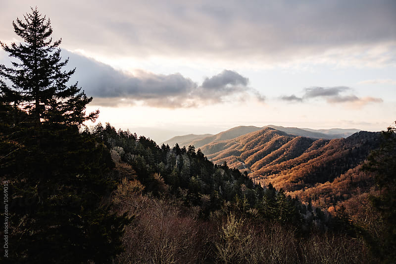 Sunrise at Newfound Gap by Joe Dodd for Stocksy United