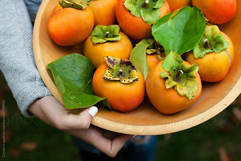 Girl holding a bowl full of organic persimmons  by Carolyn Lagattuta for Stocksy United