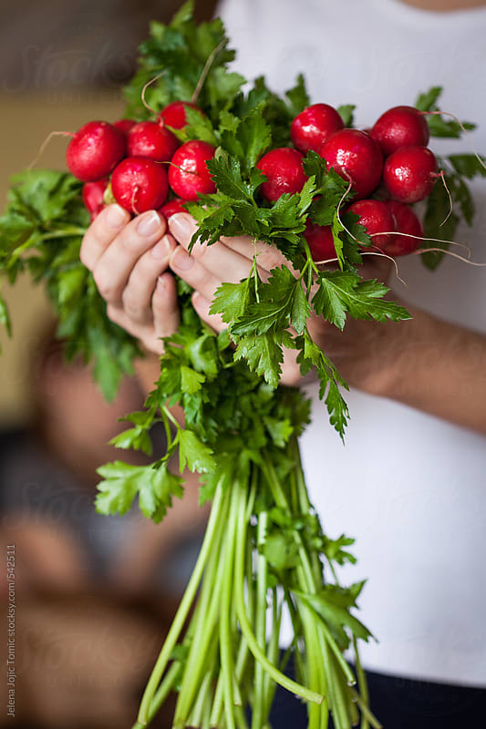 Fresh parsley and radishes by Jelena Jojic Tomic for Stocksy United