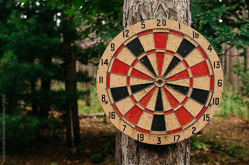Dartboard attached to a pine tree in a forest by Gabriel (Gabi) Bucataru for Stocksy United