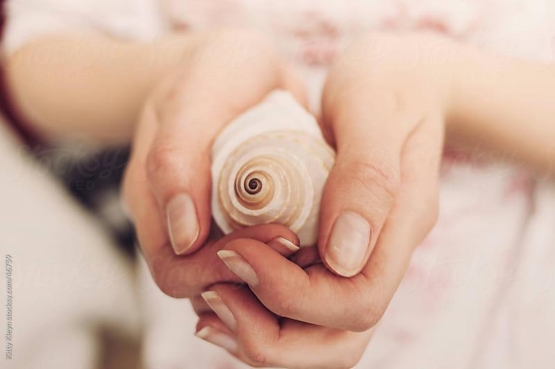 Seashell by Kitty Kleyn for Stocksy United