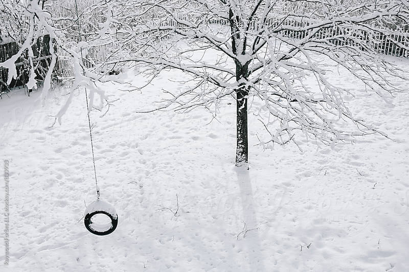 Rope Swing Winter by Raymond Forbes LLC for Stocksy United