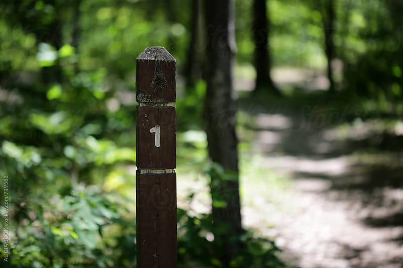 A Trail Marker On A Wooded Path by ALICIA BOCK for Stocksy United