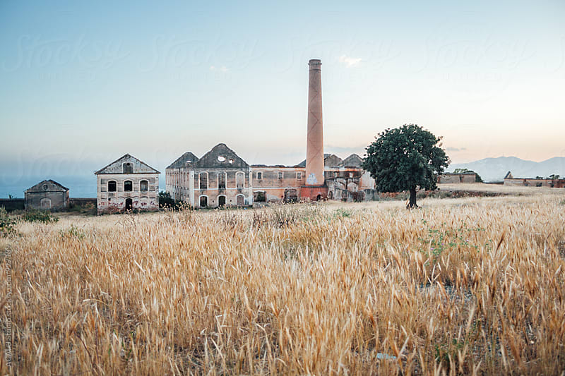 Abandoned factory next to a field of dry wheat by ACALU Studio for Stocksy United
