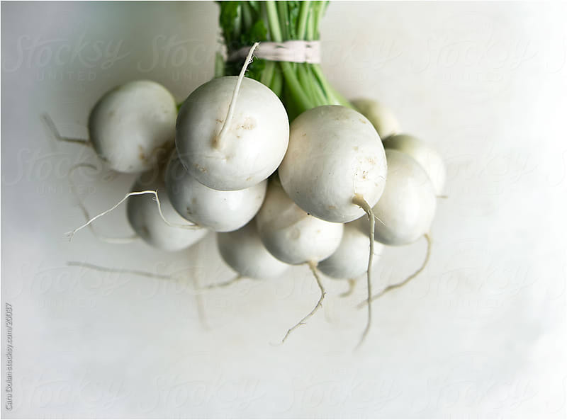 Fresh white turnips in a bunch by Cara Slifka for Stocksy United