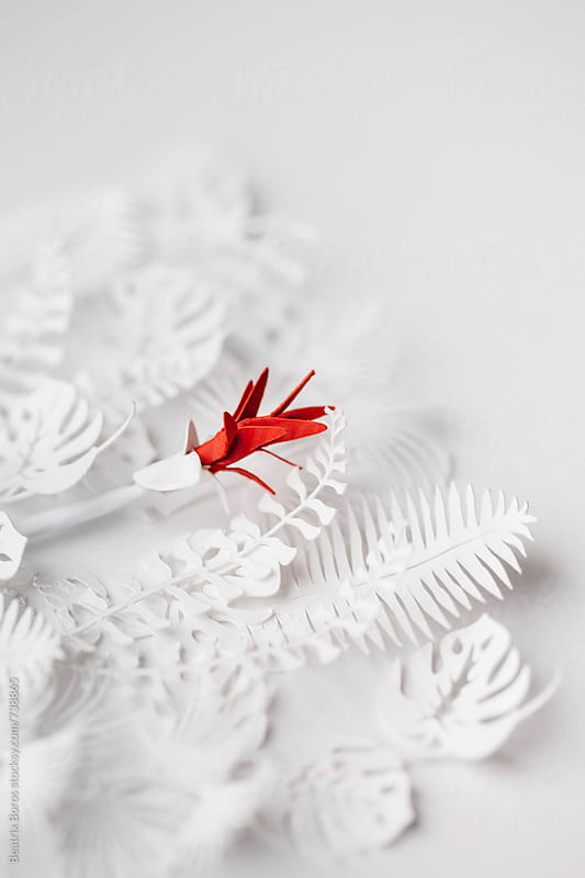 Conceptual paper project red flower in white plants by Beatrix Boros for Stocksy United