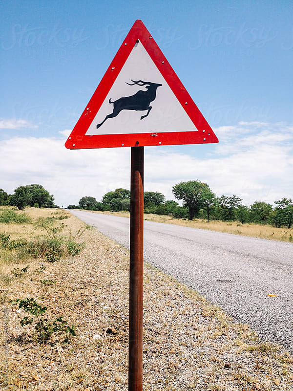 An Antelope Crossing sign on a Botswana highway by Holly Clark for Stocksy United