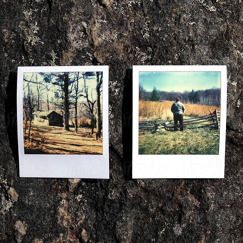 Two polaroid photos of autumn scenes by Holly Clark for Stocksy United