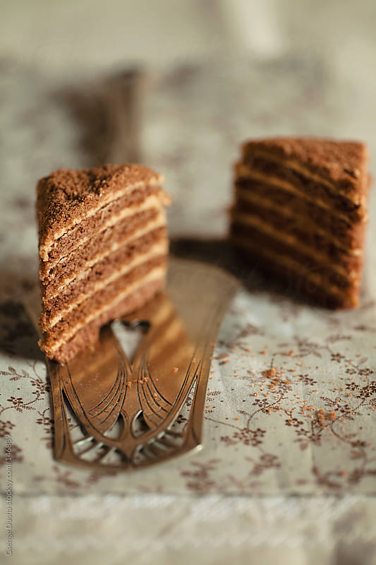 Chocolate Marlenka by Csenge Dusha for Stocksy United