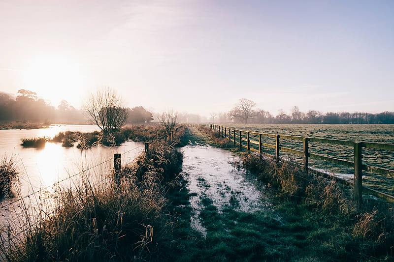 Track beside a fenced field on a frosty morning. Hilborough, Norfolk, UK. by Liam Grant for Stocksy United