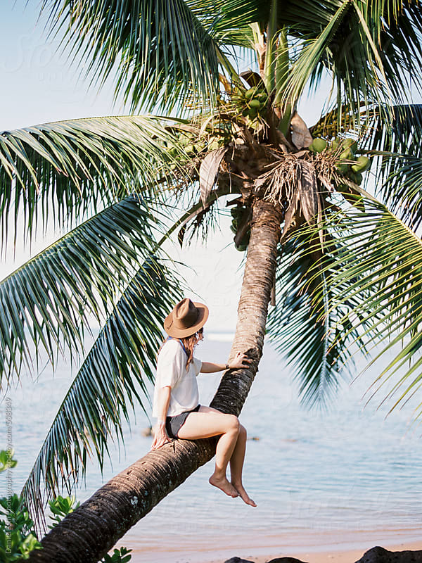 Woman sitting on palm tree by Daniel Kim Photography for Stocksy United